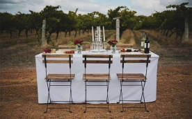 Calneggia Family Vineyards (CFV)