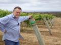 Calneggia Family Vineyards (CFV)